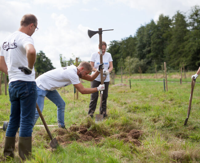 Wi mook dat! 2020 - Team Carlsberg pflanzt Obstbäume